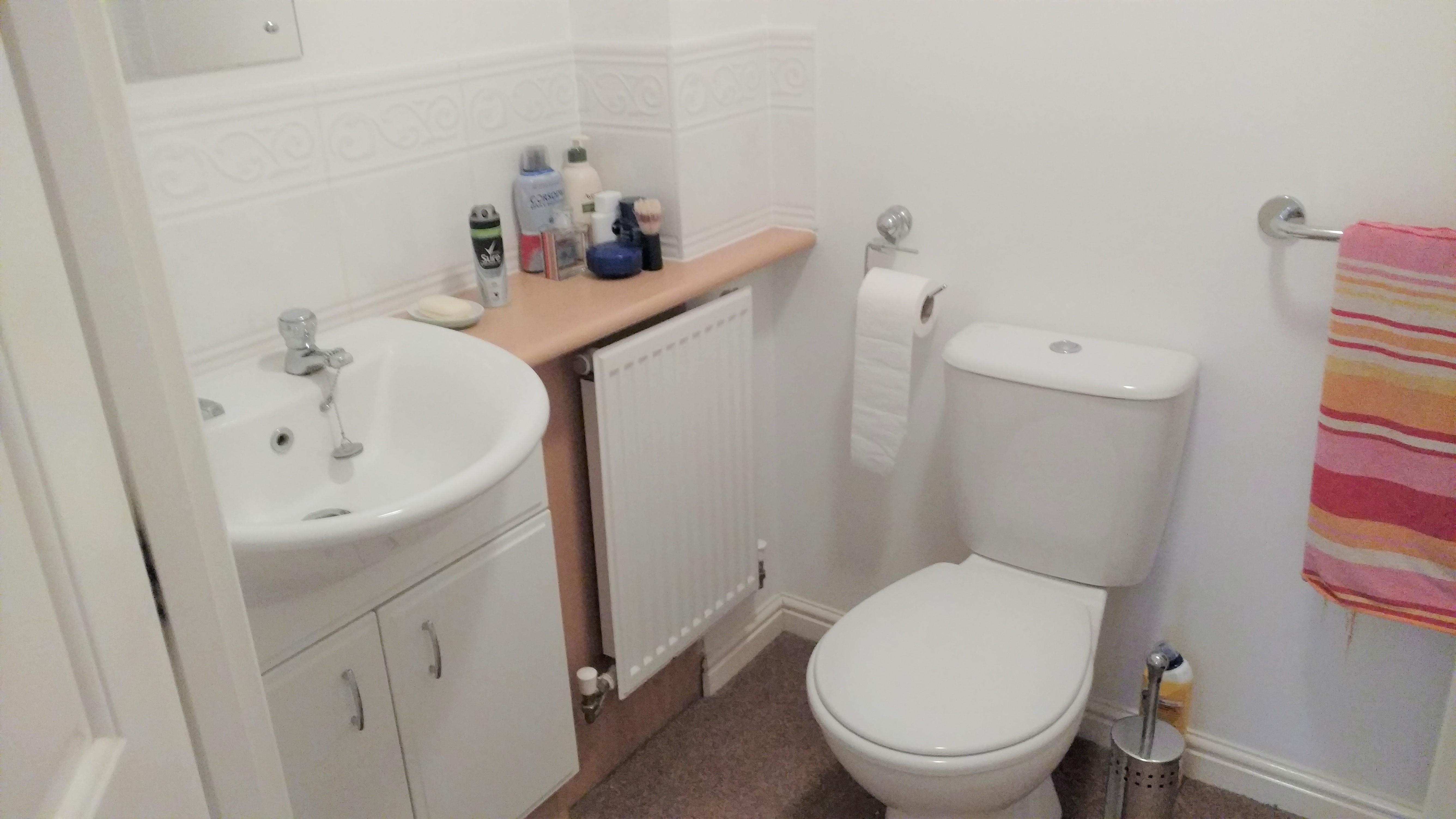 Before photo en suite bathroom